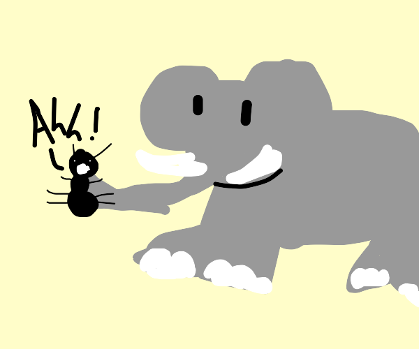 Elephant eating delicious ant