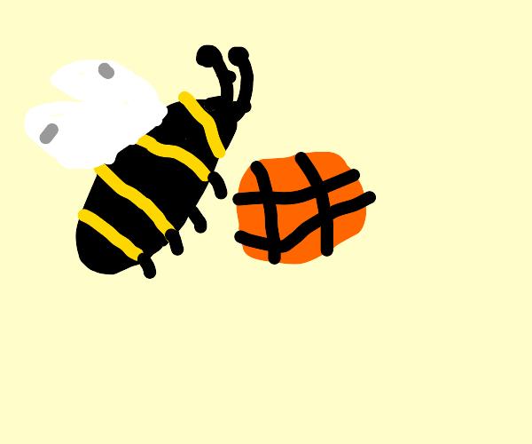 honeybee plays basketball