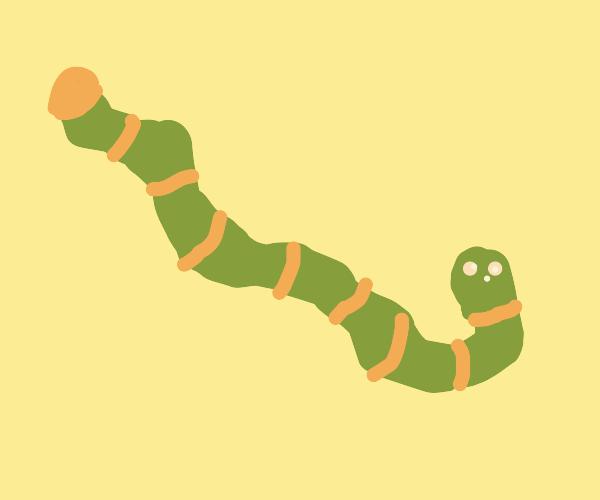 Tropical Python