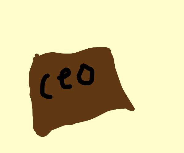 CEO Box Cover