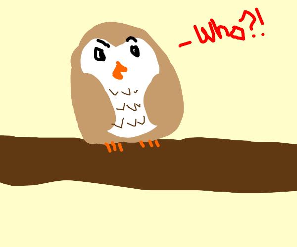 Hoooo... WHO?!