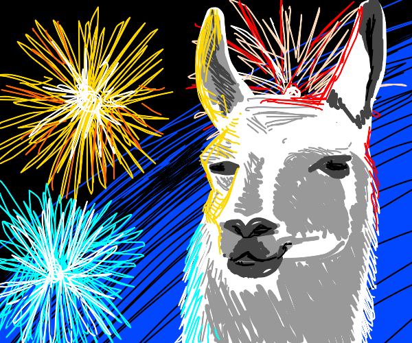 Llama enjoying the fireworks
