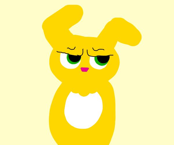 Grumpy, Yellow Bunny