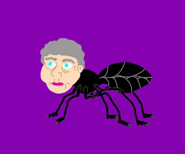 grandma got turned into an ANT?