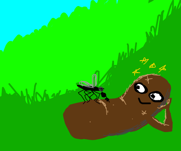 Mosquito sucking a hot turd