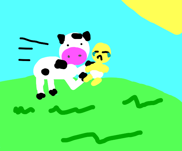 a cow stole my baby!