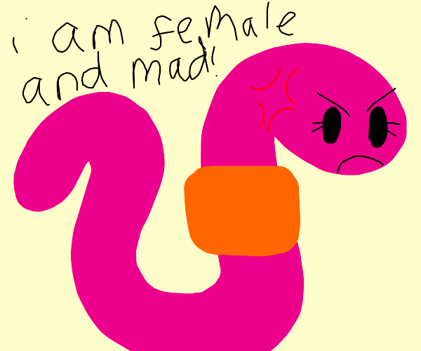 Pink female worm is mad