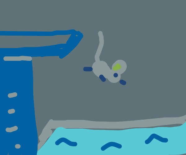 A mouse diving.