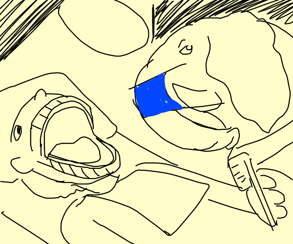 Elephant Dentist