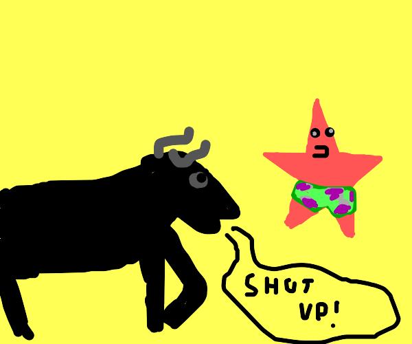 Bull tells Patrick to shut up
