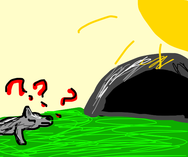 wolf questions cave