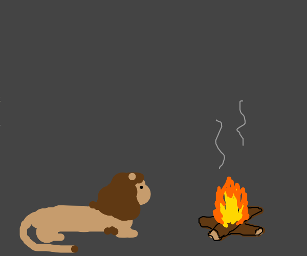 lion at side of a campfire