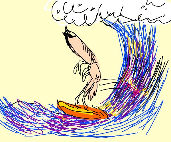 Surfin' Shrimp