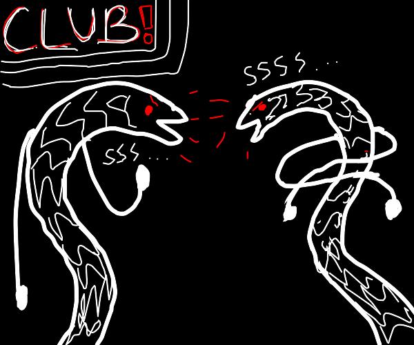 Snake Bouncer