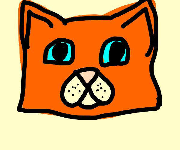 Firestar the warrior cat character