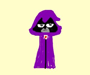 Raven (Teen Titans/TTG)