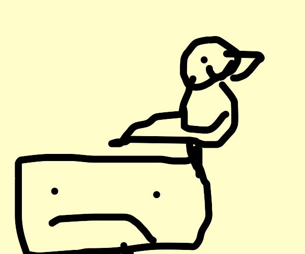 rectangle guy sad,bird happy