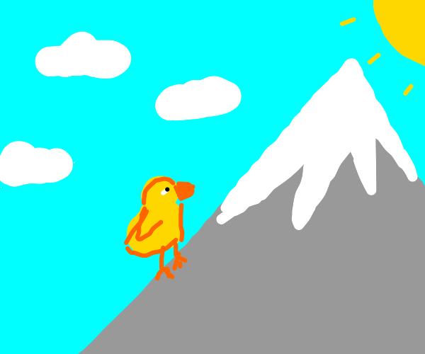 duck climbing mount everest