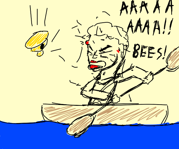 Bees attack a man on a kayak