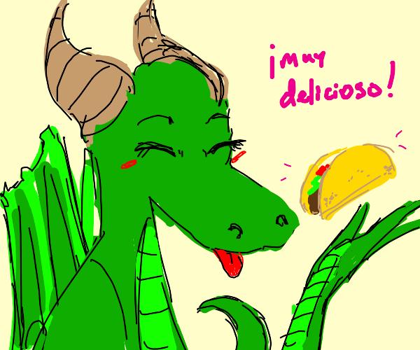 Dragon thinks taco es muy delicioso!