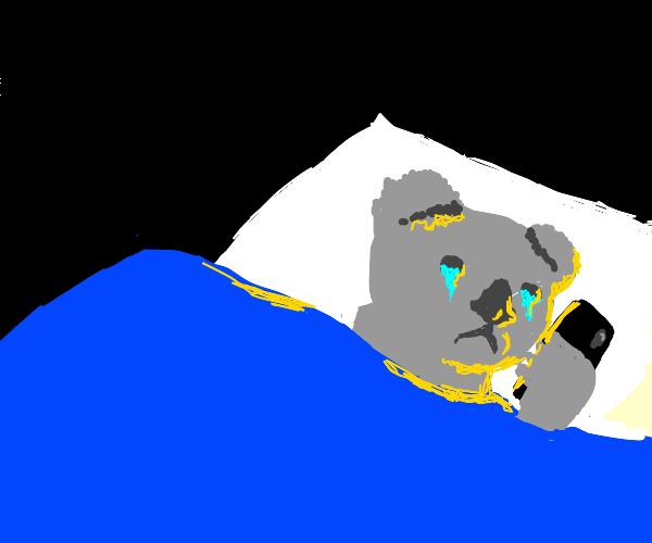 Very sad koala is phonescrolling in the night