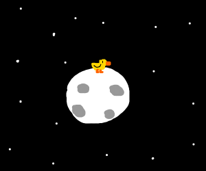 A duck on the moon
