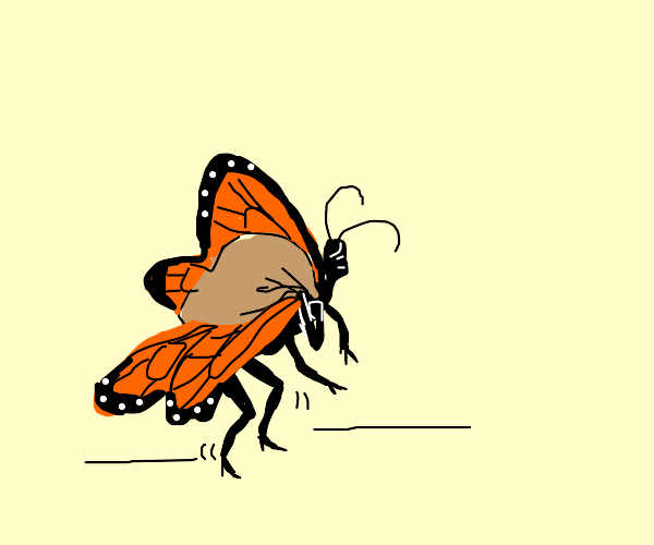 Butterfly carrying heavy sack