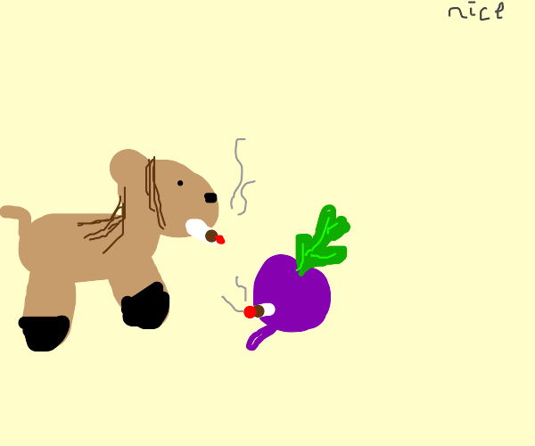 Horse and turnip smoking together