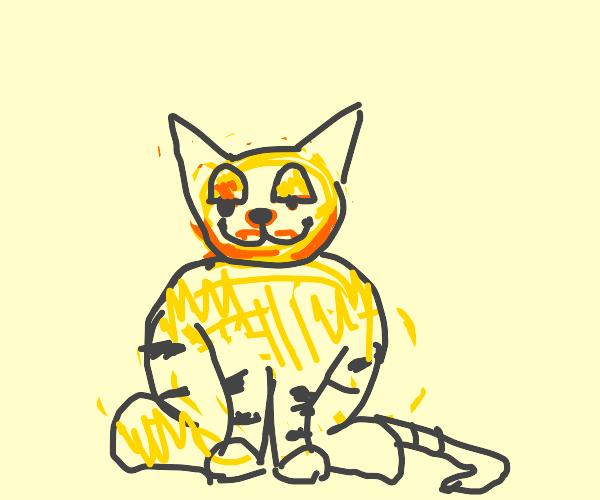 Fat Garfield on r/chonkers on reddit