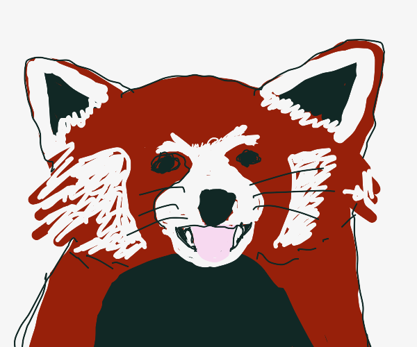 red panda smiles for the camera