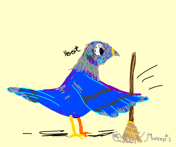 pigeon cleaning the house