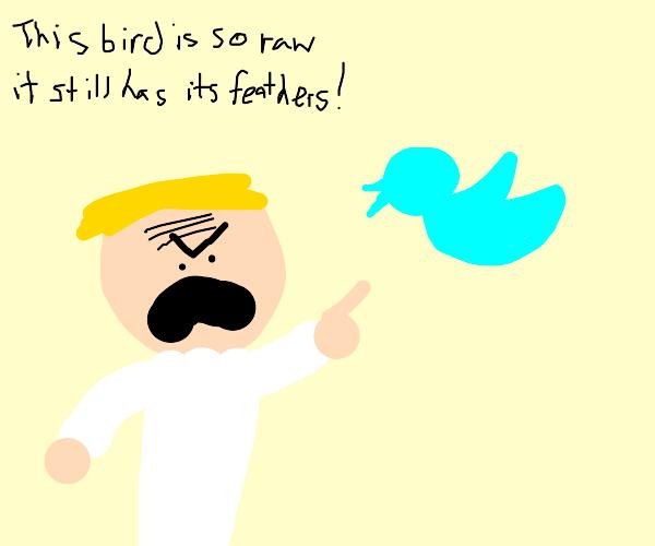 Gordon Ramsey insults twitter bird