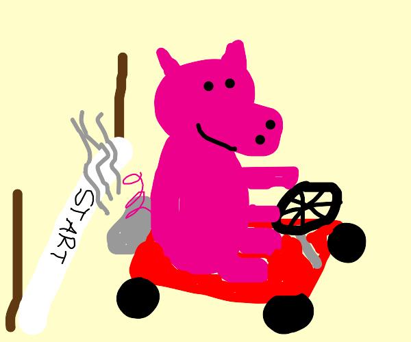 Pig kart race