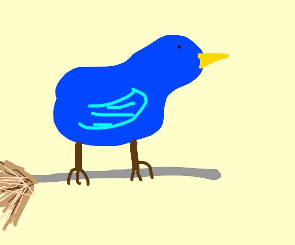 Blue Bird on a Broom
