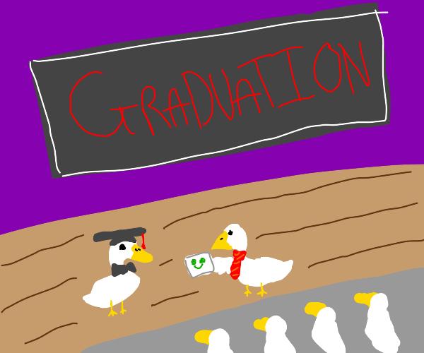 duck at graduation