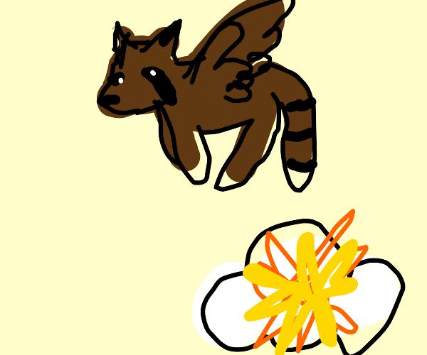Raccoon bird flies from explosions in clouds