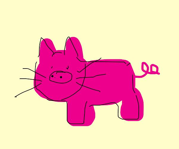 Pink cat-pig hybrid