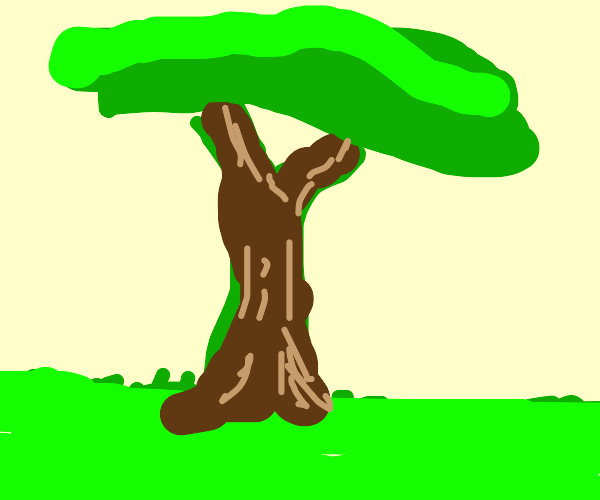 Green tree with brown bark, + Green grass