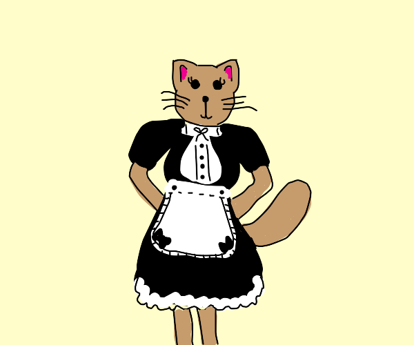Cat in a maid outfit