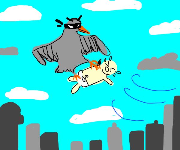 Ninja bird steals a baby