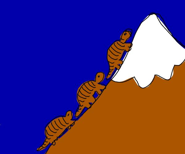 Three armadillos race to the mountain peak