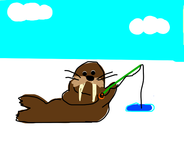 Walrus goes ice fishing