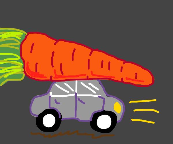 Car and big carrot