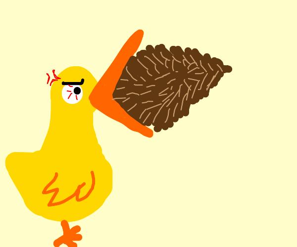 Bird eating a pinecone
