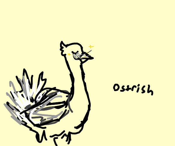 An ostrich with lovely eyelashes
