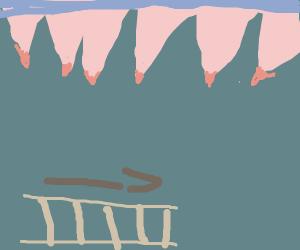 Horizontal ladder under some sharp teeth
