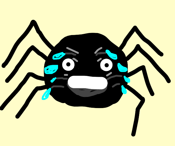 Laughing Spider