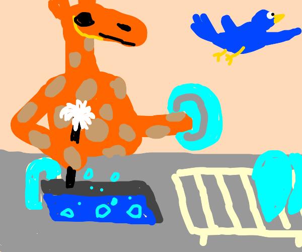 Bluebird refuses to help giraffe