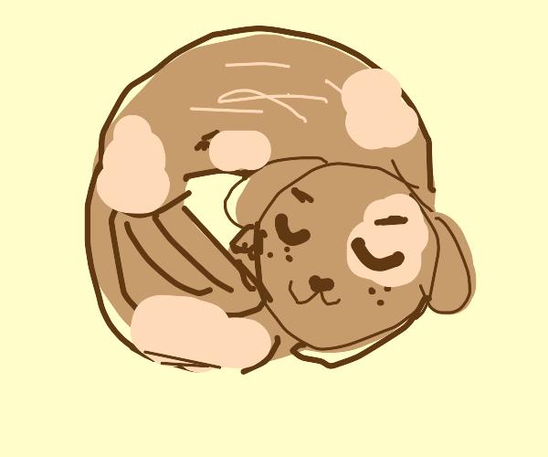 Dog shaped like a donut