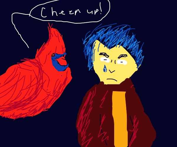 Motivational cardinal cheers up depressed boy